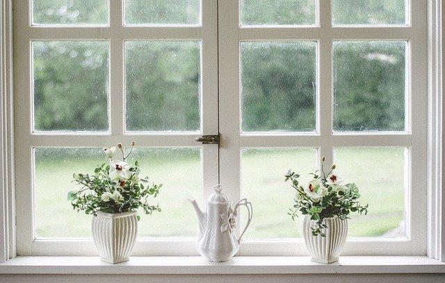 bílé okno, vázy, květiny