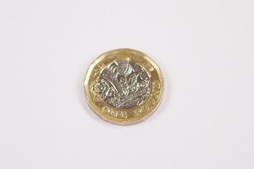 pound mince